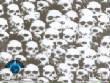 SkullsFlames/LL-296.jpg
