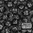 SkullsFlames/american_bully_shawnaughty_designz.jpg