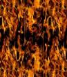 SkullsFlames/film-WildFire-1.jpg