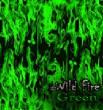 SkullsFlames/film-wildfireGREEN-1.jpg