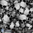 SkullsFlames/skullz.jpg