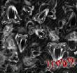 SkullsFlames/venom.jpg
